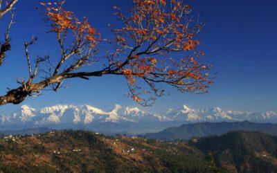 Binsar – the idyllic weekend getaway from Delhi